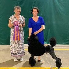 Romeo Takes Home A Reserve Best in Show over +- 200 dogs!!